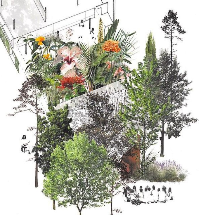 Landscape Architecture Drawings best 25+ architecture collage ideas on pinterest | architectural