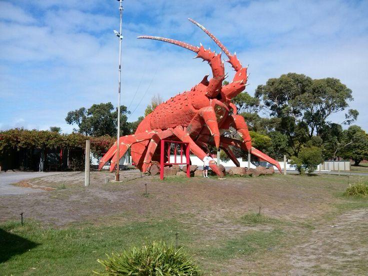 Big Lobster Victoria.