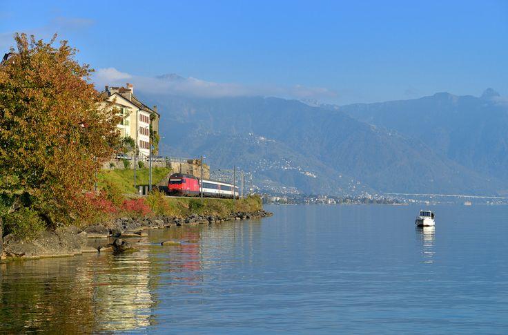 Mit einem IR aus Brig konnte die 460 039 bei St. Saphorin am Genfer See abgelichtet werden.