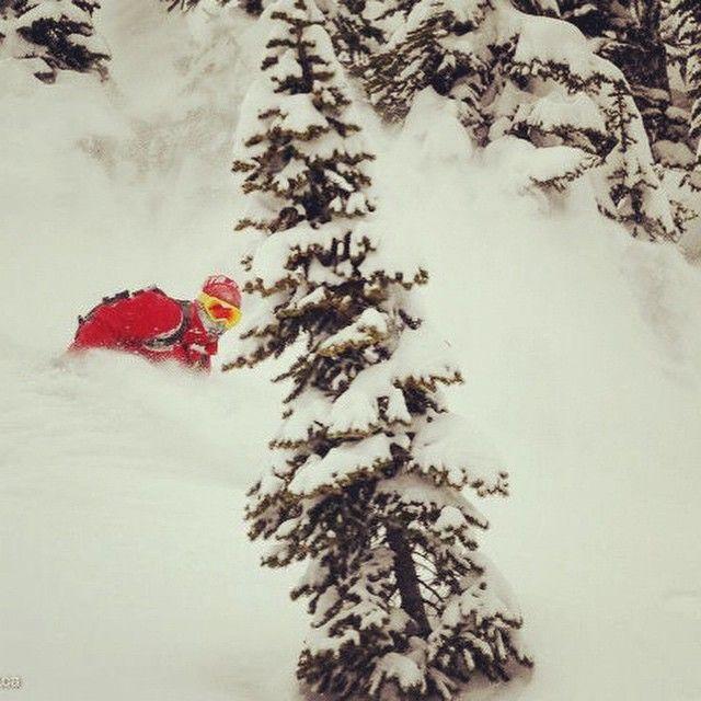 @islandlakelodge with @scottmartin_org  Mike McPhee #fernie #catskiing #bucketlist #skiing #snowboarding #backcountry #bc #winteriscoming #snowy #mountains #surfing