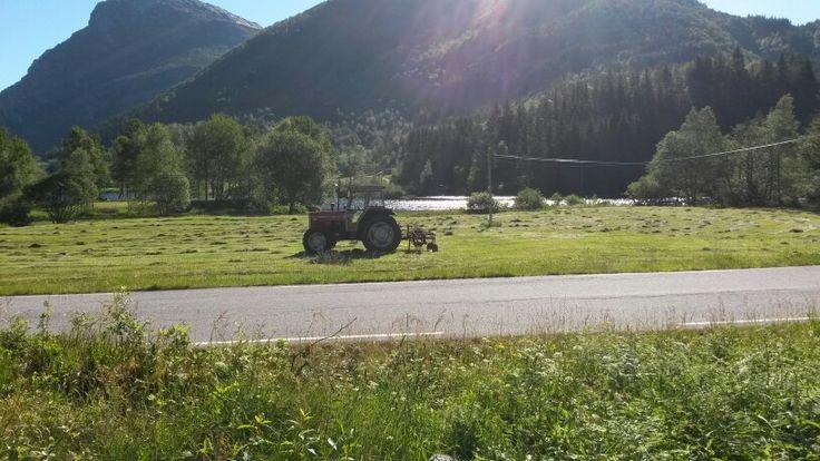 Traktor (must have)