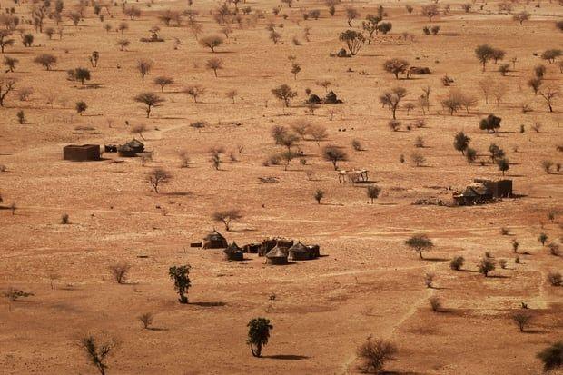 LeSaheldésigne une zone où la vie est à nouveau possible, aux portes du désert du Sahara. De nombreux pays se situent dans cette zone, du Sénégal à la Mauritanie en passant par le Niger ou leSoudan. Si le Niger et le Sénégal sont les fleuves qui traversent cette région, les cultures y sont tout de même très incertaines.