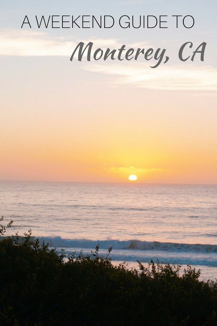 Monterey is two hours south of San Francisco, which makes it the perfect weekend getaway! Check out my weekend guide to Monterey on things to see and do.