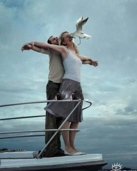 """honey, let's recreate the titanic moment.""  don't remember rose getting smacked in the face by a bird..."