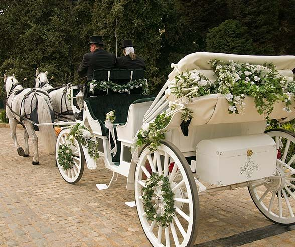 De 25 b sta id erna om horse carriage bara p pinterest for Car carriage