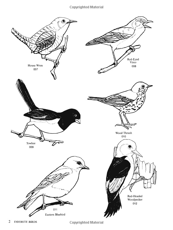Bird Illustrations CD-ROM and Book (Dover Electronic Clip Art): Dover: 9780486996691: Amazon.com: Books