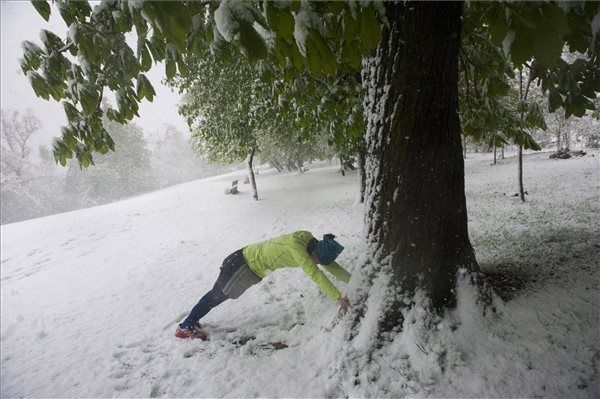 Bemelegít egy futó Budapesten, a behavazott Normafánál 2017. április 19-én | MTI Fotó: Demecs Zsolt - PROAKTIVdirekt Életmód magazin és hírek - proaktivdirekt.com