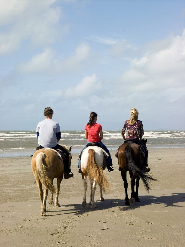 Go horse riding on the beach during your holidays in Port Douglas. Check out specials and luxury accommodation via http://www.ozehols.com.au/holiday-accommodation/queensland/cairns-area/port-douglas #portdouglasholidayhomes