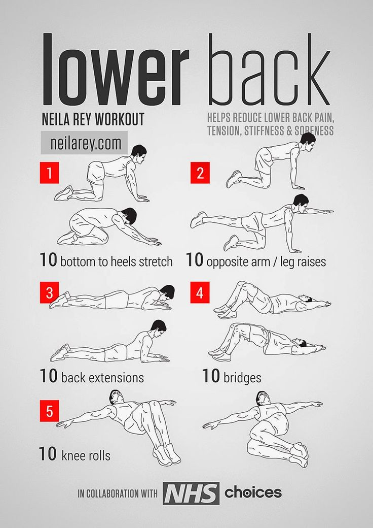 Lower Back Exercises » Health And Fitness Training