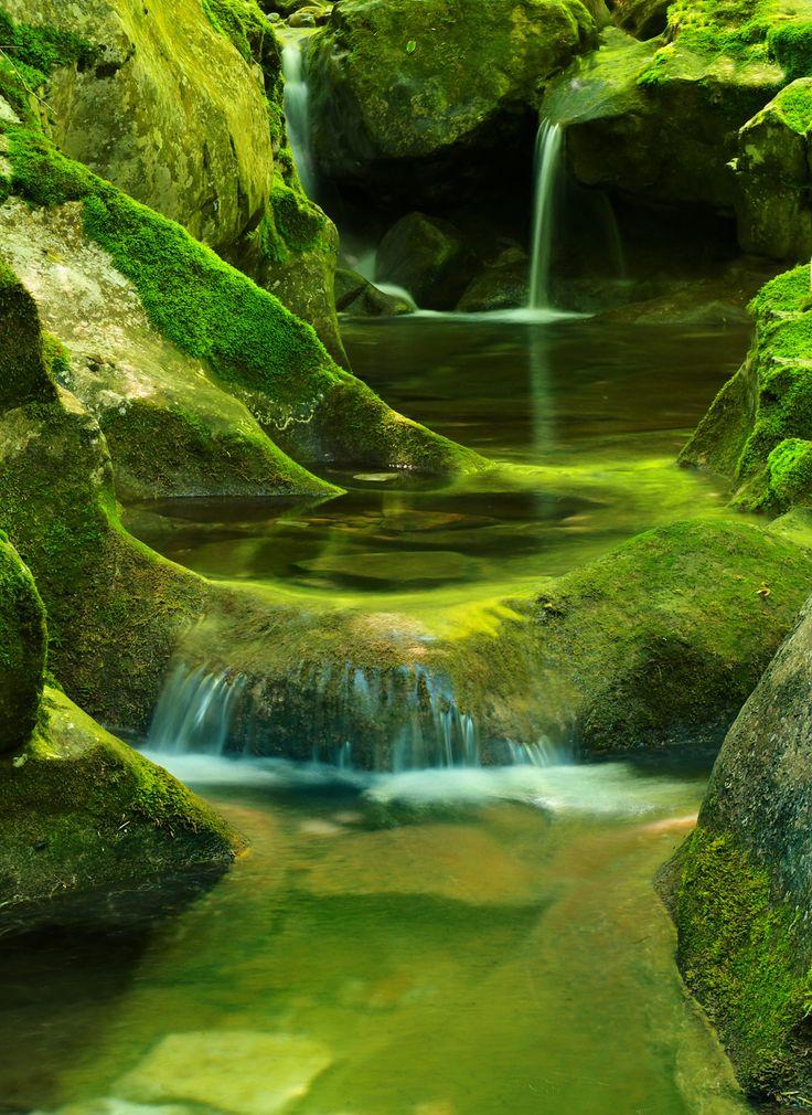 Green Cascade (1600×2196)
