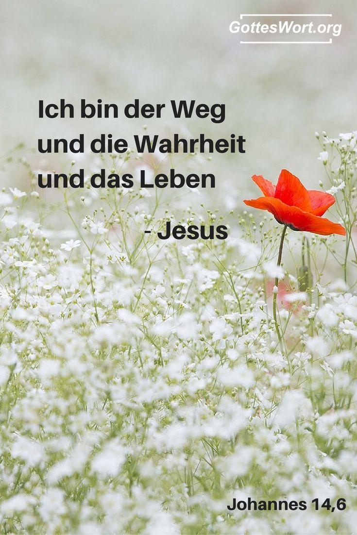 Ich bin der Weg und die Wahrheit und das Leben. Johannes 14,6 Weiterlesen: http://www.gottes-wort.com/christliche-leben.html
