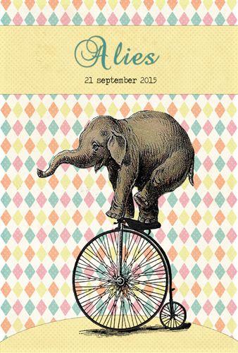 Geboortekaartje Alies - voorkant - Pimpelpluis - https://www.facebook.com/pages/Pimpelpluis/188675421305550?ref=hl (# meisje - olifant - fiets - pastel - circus - origineel)