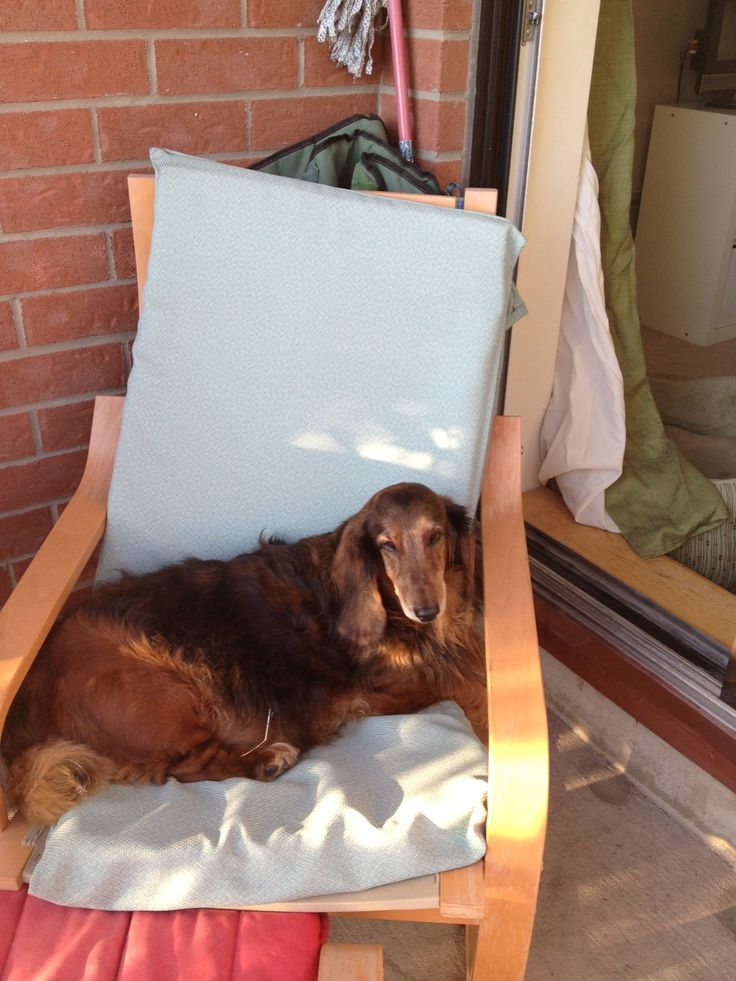 lounging on the balcony in the summer