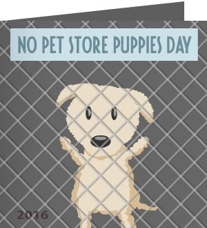 Barbara F. just received a Care2 Thank You Note For Taking Action on No Pet Store Puppies Day.