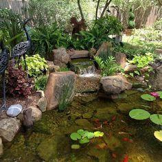 Charming Backyard Water Garden In Richmond, TX Features A Constructed  Wetlands Filter That Adds An