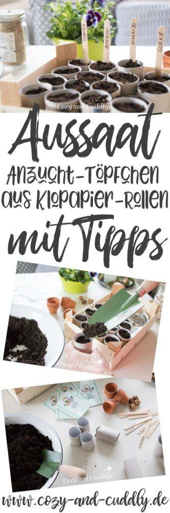 Anzucht-Töpfchen aus Klopapierrollen – Aussaat-Tipps – Wir starten ins neue Gartenjahr