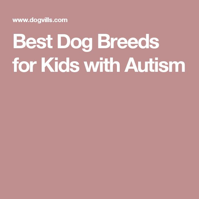 Best Dog Breeds for Kids with Autism