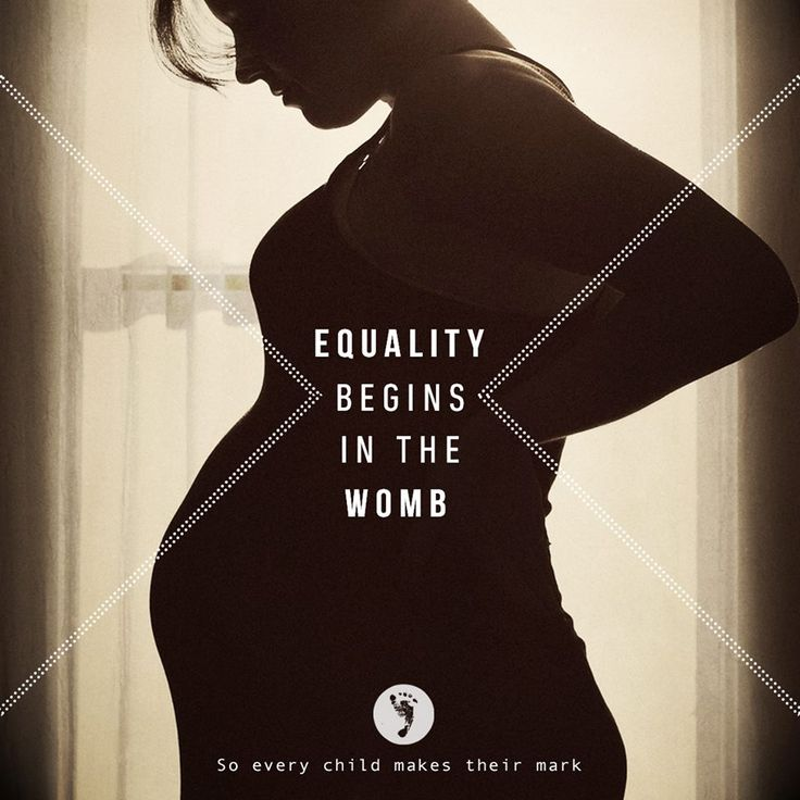 Abortion the termination of innocent life inside the womb