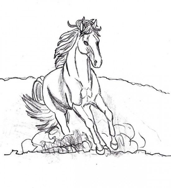 Find This Pin And More On Coloring Pages Horses Printable