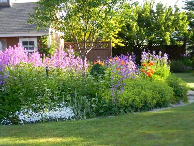 Lovely cottage garden!