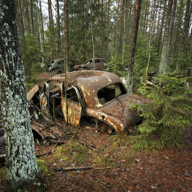 been there a long time.... old car abandoned