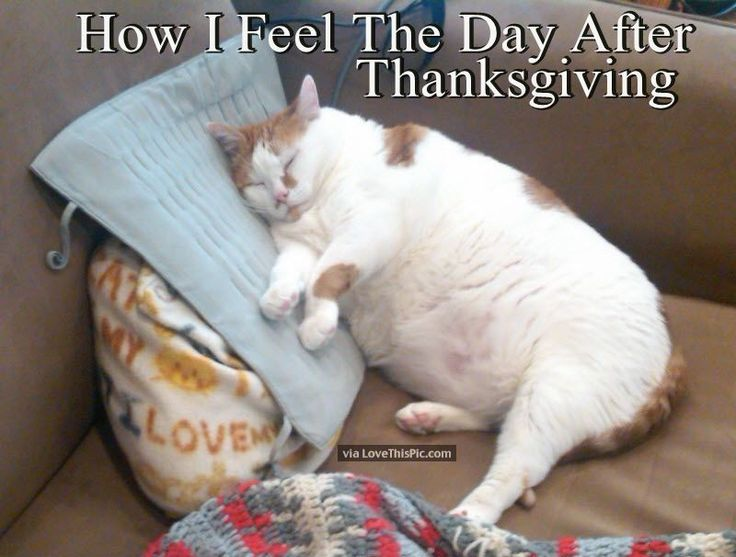 How I Feel The Day After Thanksgiving