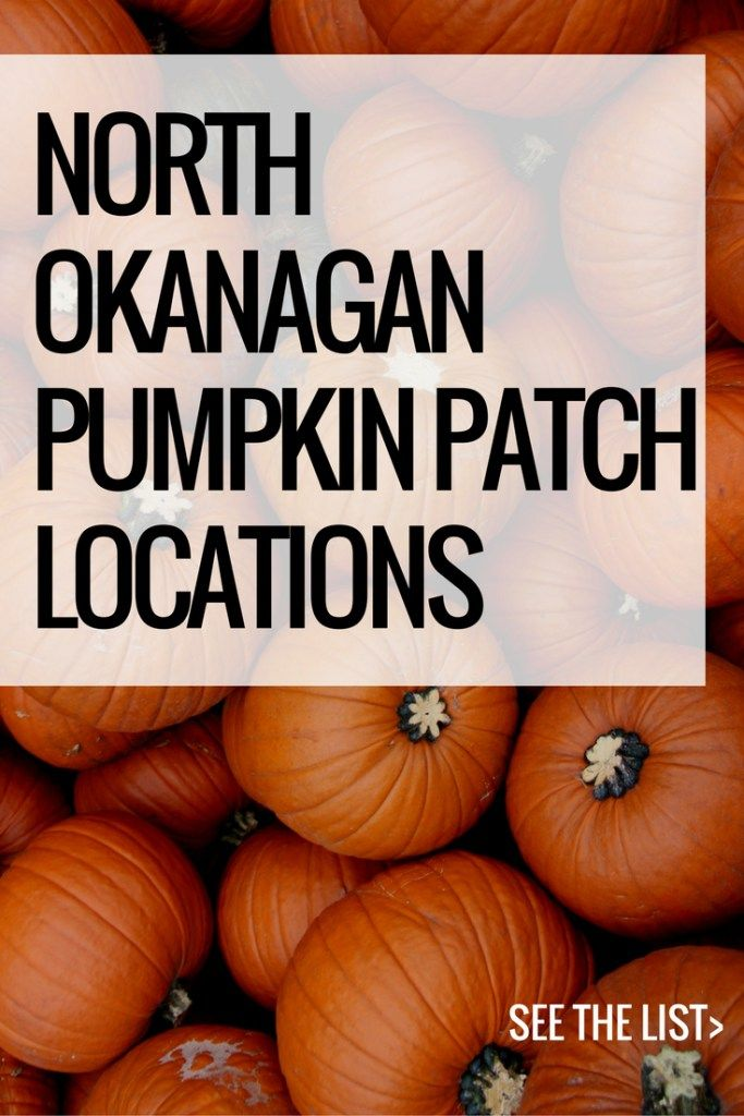 North Okanagan Pumpkin Patch Locations | Home for the Harvest