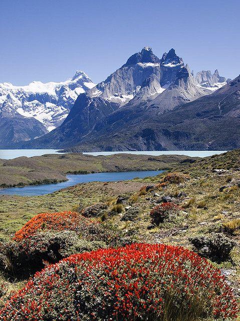 Parque Nacional Torres del Paine, Magallanes, Chile