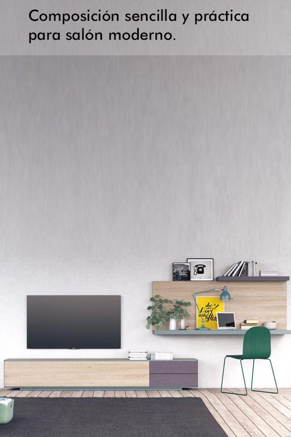 Salon Sencillo Y Practico De Estilo Moderno Compuesto Por Un Mueble