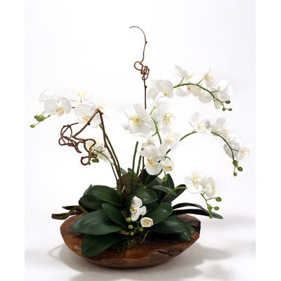 Silk Phalaenopsis Orchid Garden with Driftwood in Rustic Wood Basin