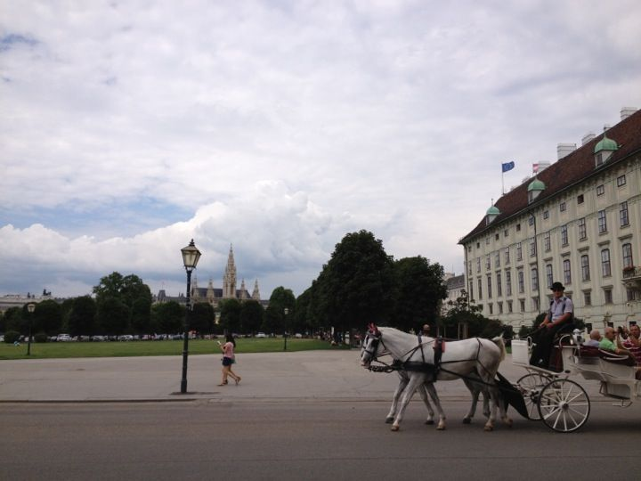Wien / Vienna, Austria.  Cold and reserved people all around until/unless you get under their 'crust'. A lot to do, a lot to see, cuisine of the palace to eat, functional public transportation, history, architecture, not too expensive to visit for a few days... One of my favorite capitals.