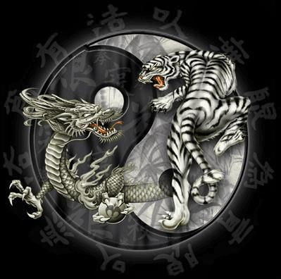 Wing Chun...Mystic's first style and most beloved! god isn't that an awesome symbol...breathtaking eh?Tattoo Ideas, Dragons Tigers, Tigers Tattoo, Yinyang, Martial Art, Tigers Yin, Yingyang, Ying Yang, Yin Yang Tattoo