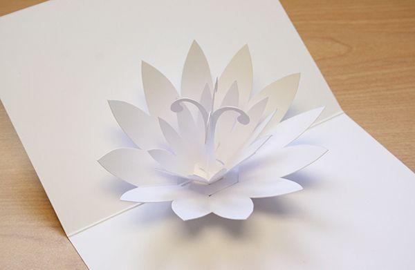Pop up flower card (concept) by Mat Bogust