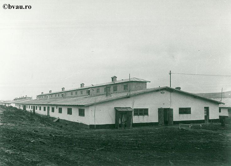 """Noile grajduri de la Cooperativa Agricolă de Producție 11 Iunie Pechea, anul 1969, Galati, Romania. Imagine din colecțiile Bibliotecii Județene """"V.A. Urechia"""" Galați."""