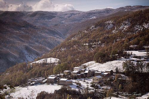Pomarolo e la prima neve - Ferriere, Piacenza