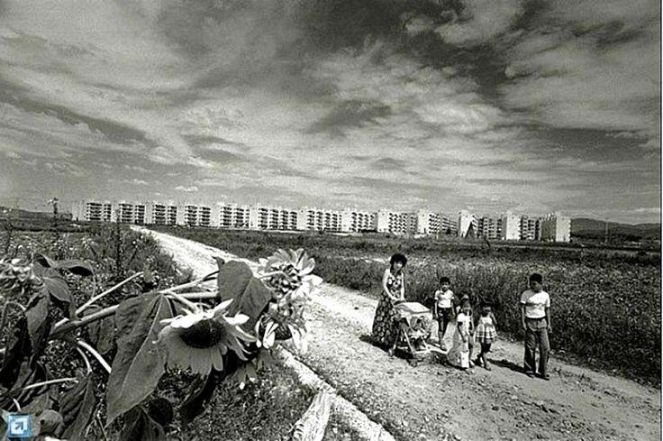 클리앙 > 모두의공원 > 1970년대 강남 재개발 현장.jpg