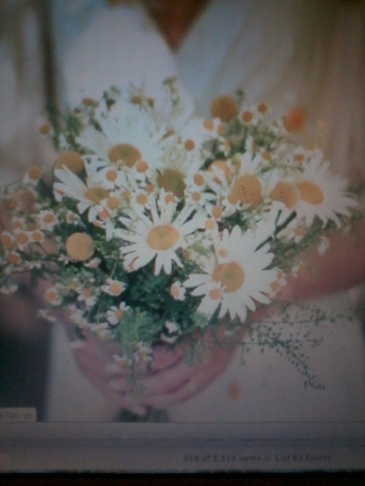 62 best Flowers images on Pinterest | Boutonnieres, Daisies and ...