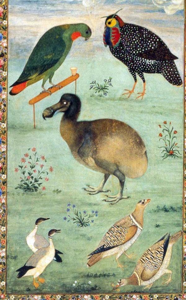Ustad Mansur, Mughal artist, 1625