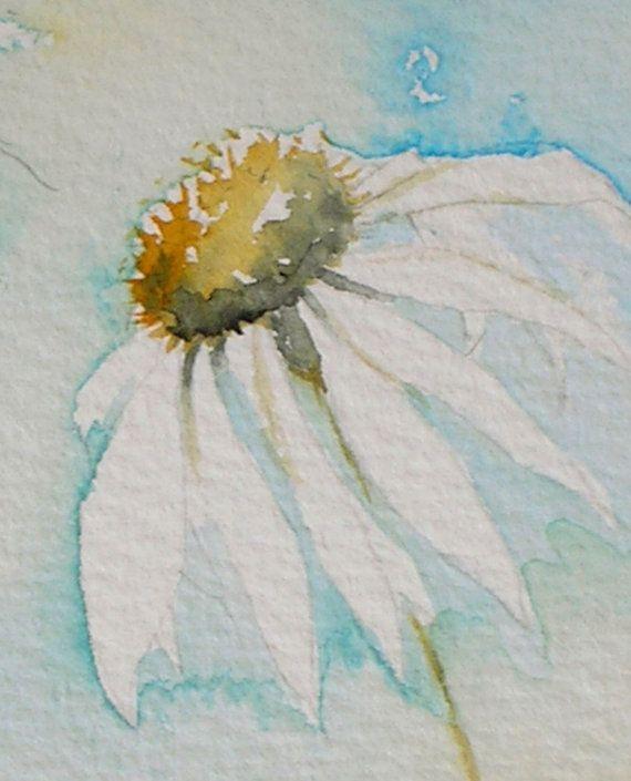 Margherite in un acquerello di brezza di mare di TheMinervaGallery