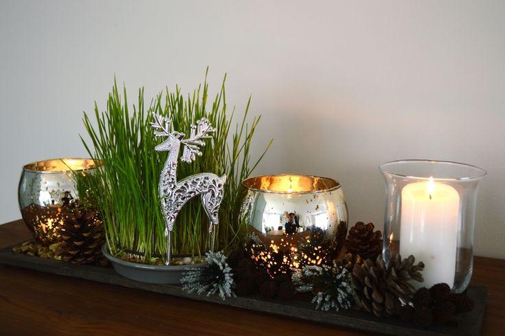 Tradition Noël - Blé de la Sainte Barbe