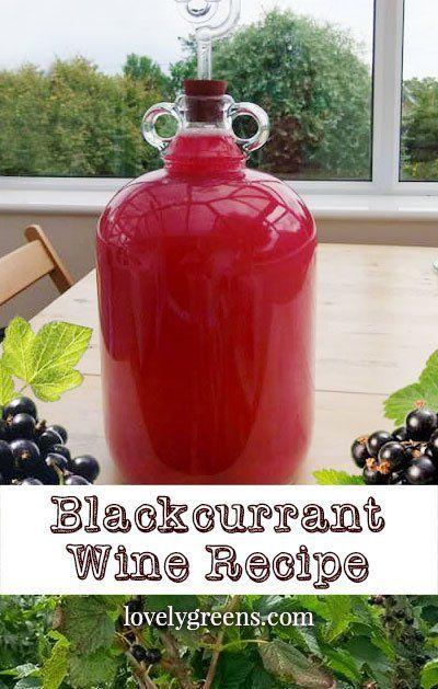 Blackcurrant Wine Recipe
