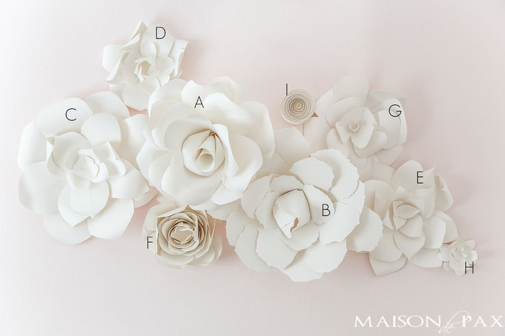 181 best paper images on Pinterest   Giant paper flowers, Paper ...