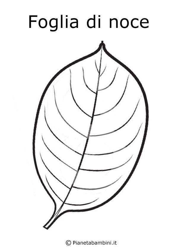 Disegni Di Frutta E Foglie Autunnali Da Colorare Primini Plant