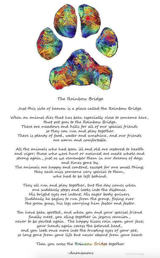 The Rainbow Bridge... blog and art by Sharon Cummings sharoncummings.wordpress.com #blogger #rainbowbridge #dogpaw