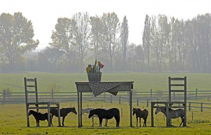 Little Horses and a Giant Table, central Germany @Kendi Weygand