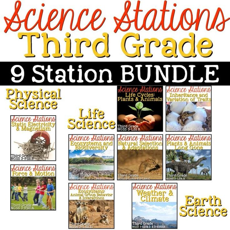 A BUNDLE of 9 Science Stations Sets that cover all Next Generation Science Standards for third grade: Force & Motion Static Electricity & Magnetism Life Cycles: Plants and Animals