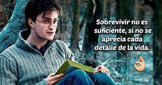 Todos crecimos con la idea de que la escuela era el único lugar diseñado para aprender y con el paso del tiempo desechamos esa idea, pues la familia, los amigos, el amor, incluso el arte, el cine y la música nos han dado las mejores lecciones para vivir. El mundo de Harry Potter es mágico, creati