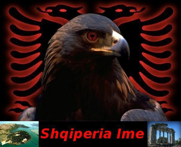 Awesome Wallpapers For Iphone X Shqiperia Ime Albanian Pride Kuqezi Eagle Bird