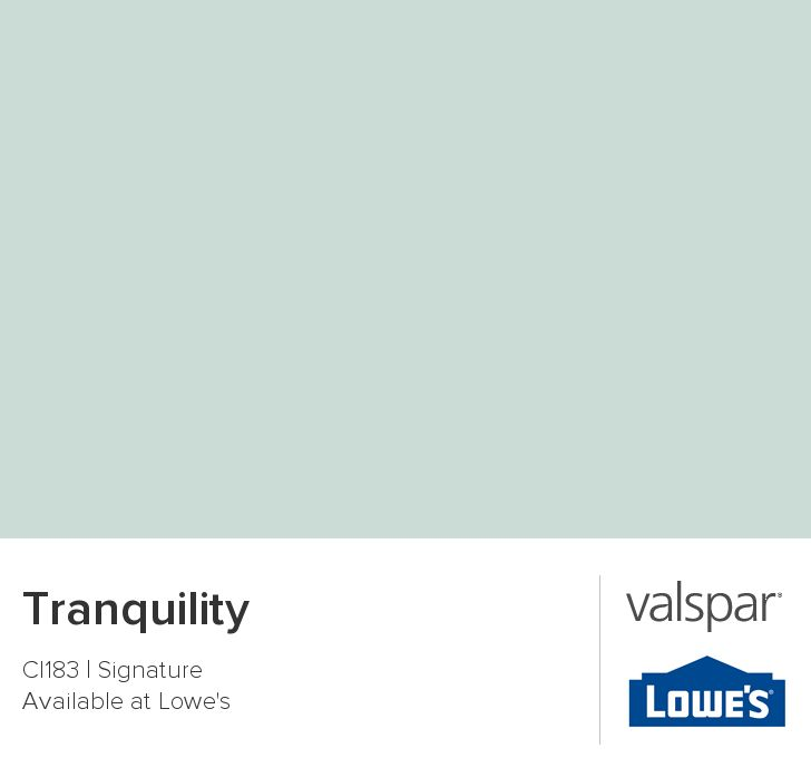 I just painted the guest bathrooom this color: Tranquility from Valspar.