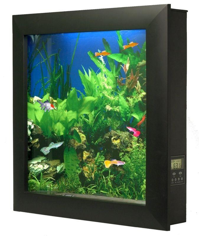 17 Best Images About Aquarium On Pinterest Aquarium